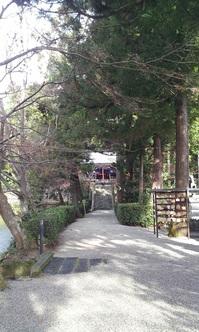 高鴨神社.jpg