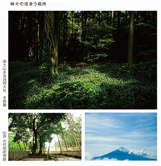kamigamino_20210630_3.jpg