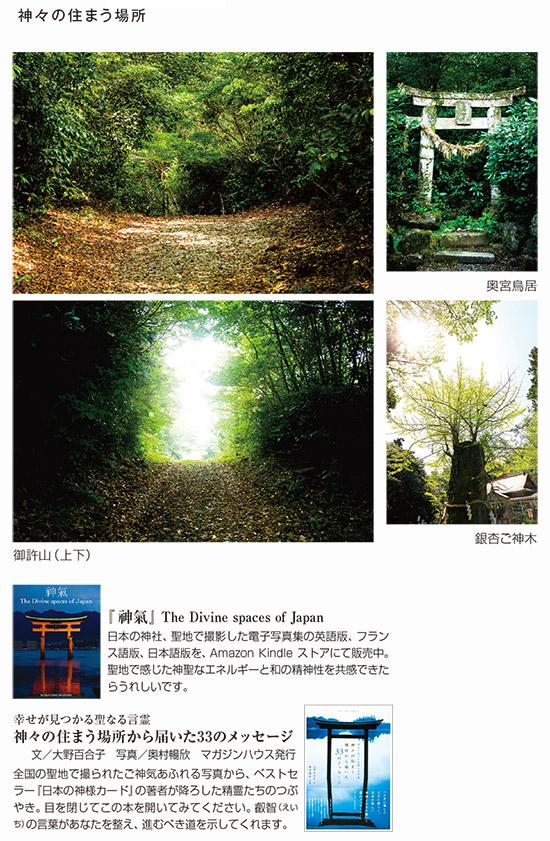 kamigamino_20210728_3.jpg