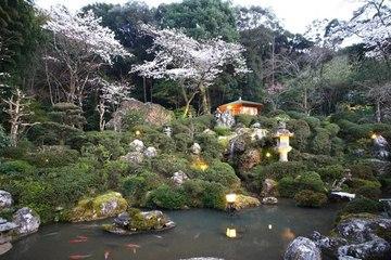加尾の庭.jpg