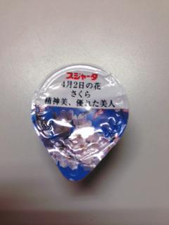 sakura suj.JPG