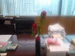 デスクの花②.jpg