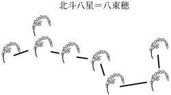 zu3-3yatukaho8.jpg