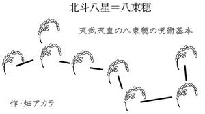 畑ブログ1.jpg